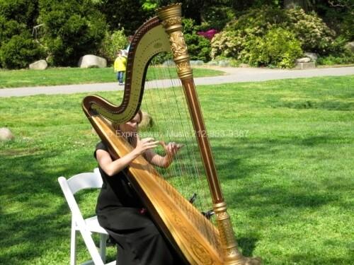 Expressway Music Harpist at Palm House Brooklyn NY