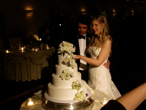 cake cutting at long island wedding