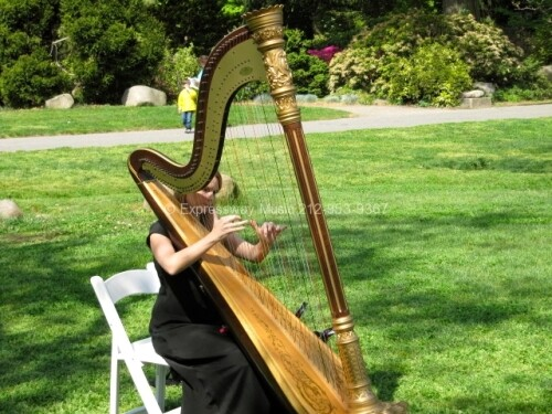 Expressway Music Harpist at Palm House Brooklyn NY