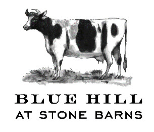 blue_hill_stonebarns_logo