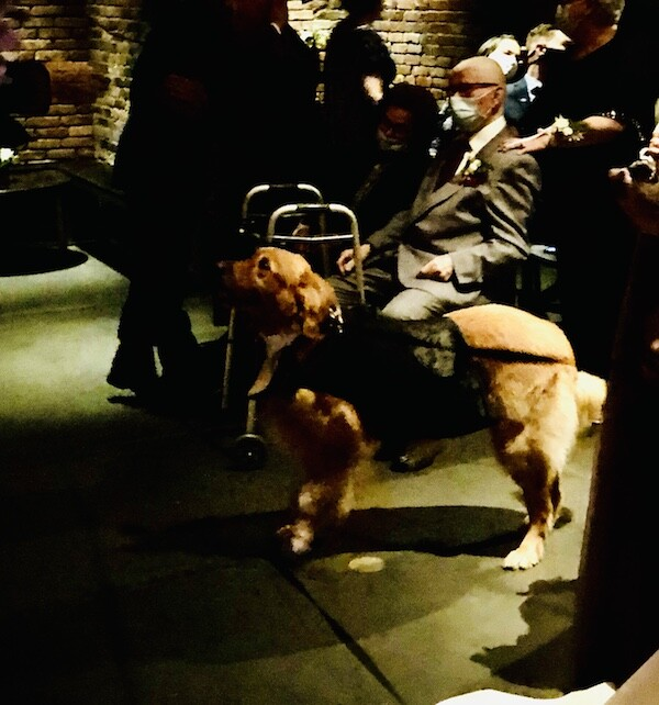 Dog at wedding at the Foundry Long Island City