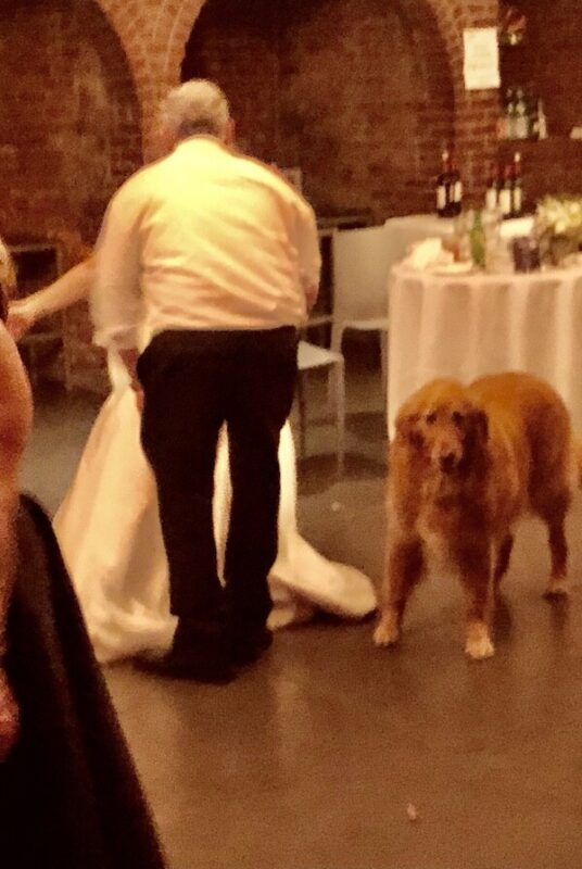 first dance with Dog